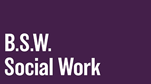 Bachelor of Social Work (BSW)