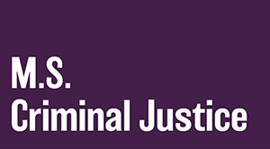Master of Science in Criminal Justice (MSCJ)