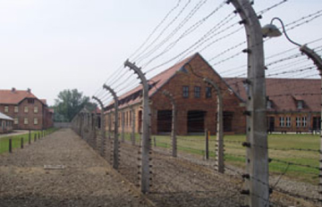 Holocaust and Genocide Studies newsletter
