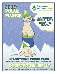 Image of he Polar Plunge 2019 Flyer
