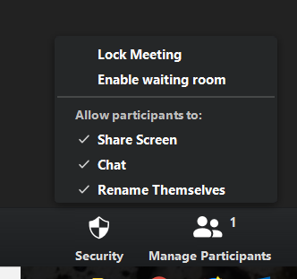 This shows the new Security panel in the host meeting controls in Zoom.