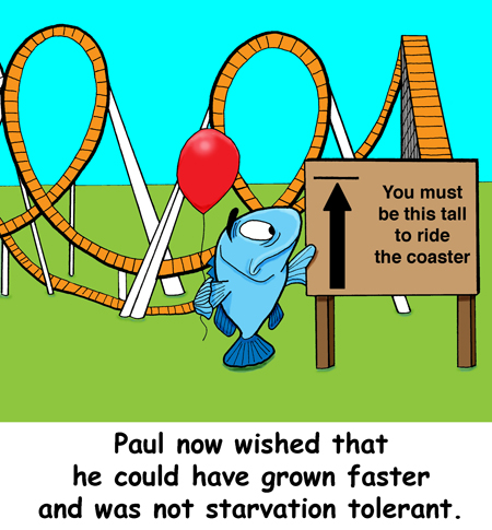 Paul now wished that he could have grown faster and was not starvation tolerant.