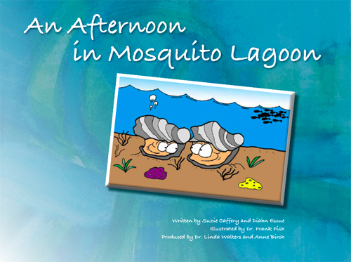 An afternoon in mosquito lagoon