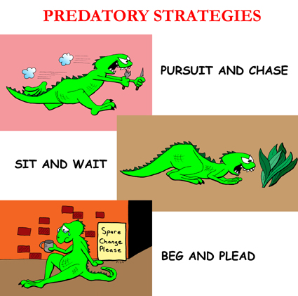 Predatory Strategies